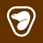 parks-canada-beaver-brown-s