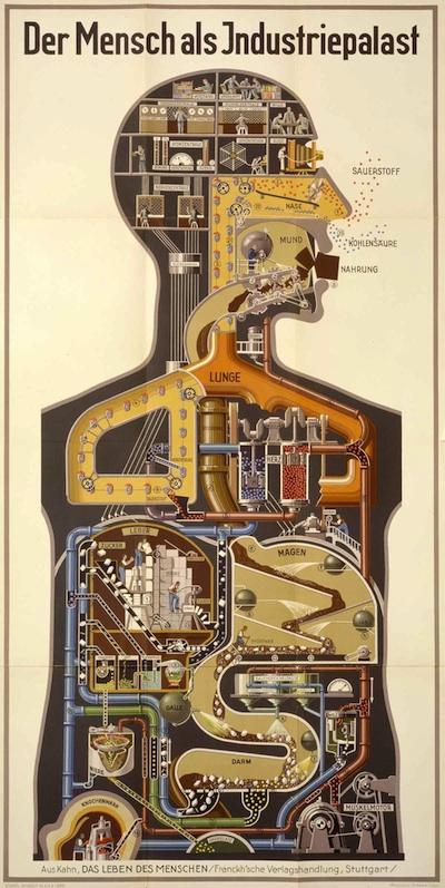 Der Mensch als Industriepalast-400