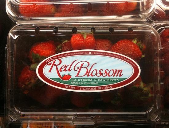 California Strawberries-550