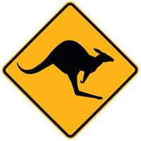 Kangaroo_crossing