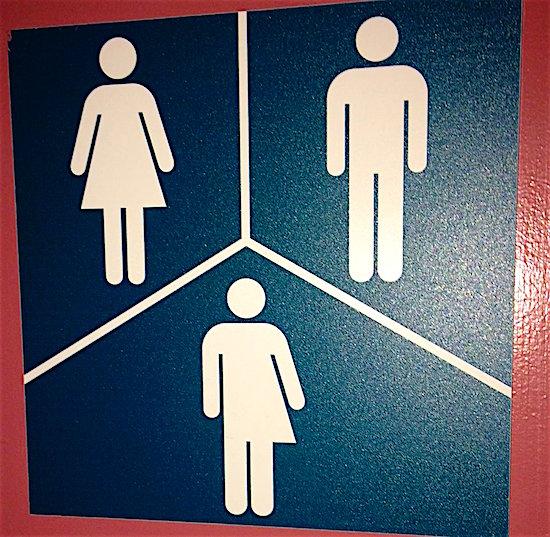 genderfreewashroom icon