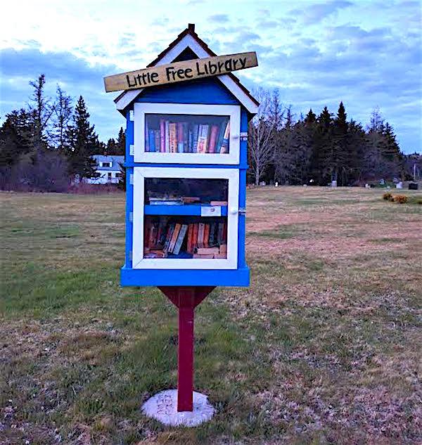 Little Public Library copy
